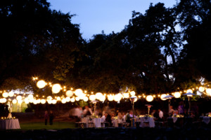 Napa Valley Wedding Contact