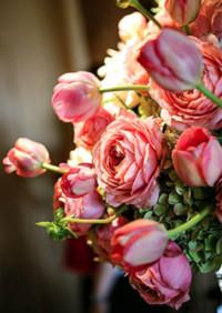A Pink Ombre Napa Wedding