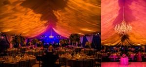 Meadowood Napa Valley Wedding Reception